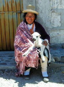 Gjetar frå Peru