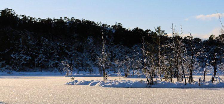 Vinterbilete  frå  Masfjorden